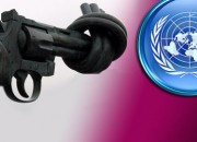 un gun control treaty