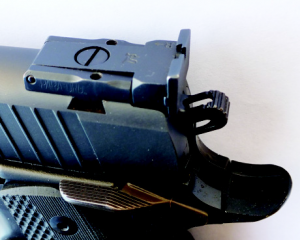 The rear sight is large and precise, with screws that are easy to adjust with a full sized driver.