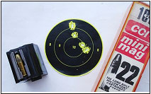 A five-shot group fired at 50 yards with the 10/22 measures about 1-3/8 inches.  Iron sights, bedroll rest. This would not be a bad small- game rifle.