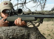Savage-338Fed_Rifles