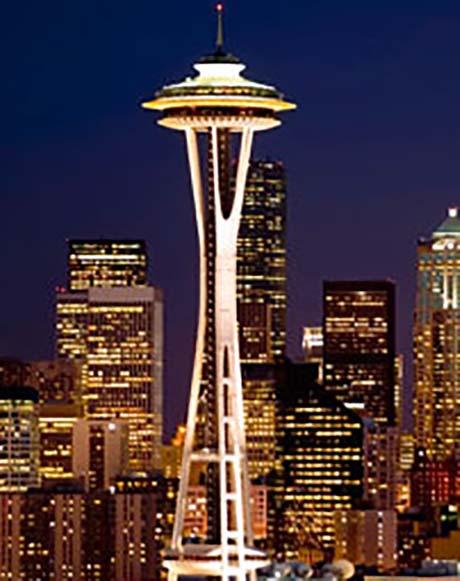 Seattleneedle