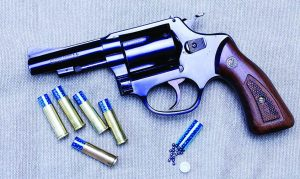 A small .38 revolver with shotshells makes an excellent hiking companion.